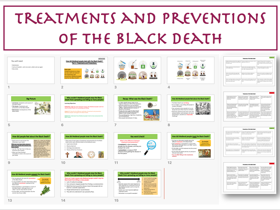 Treatments & Preventions of the Black Death
