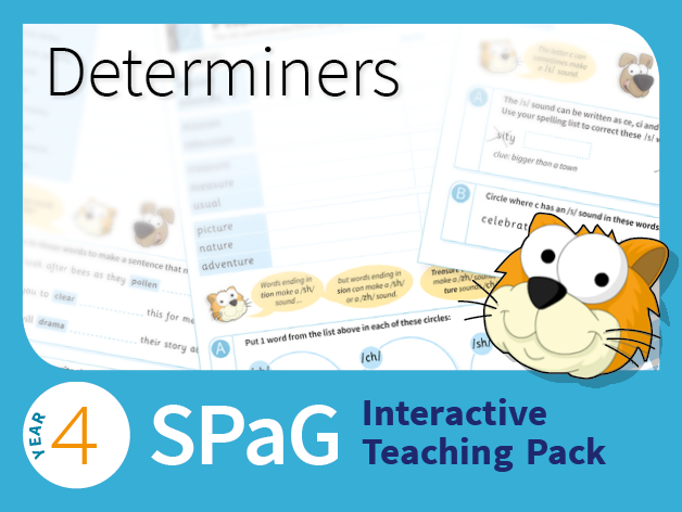 Year 4 SPaG Interactive Teaching Pack - Determiners