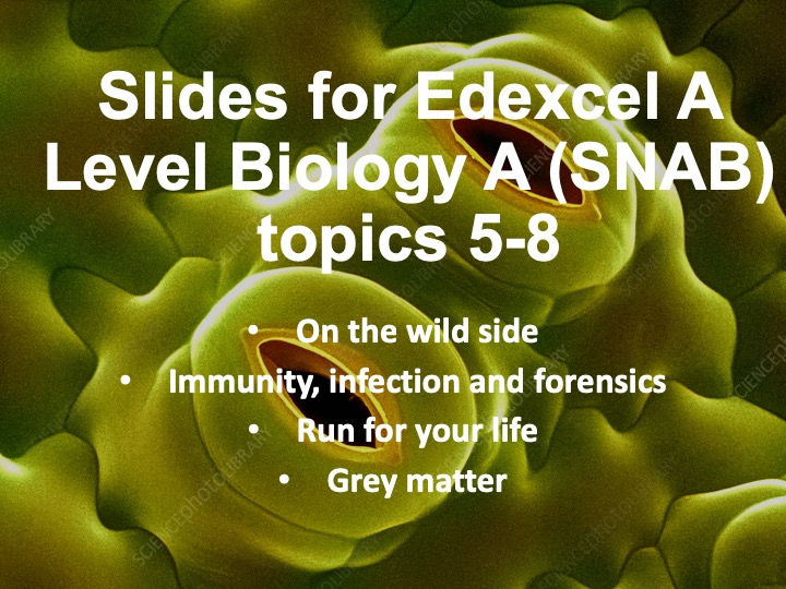 Edexcel A level Biology A (SNAB) Slides for topics 5-8