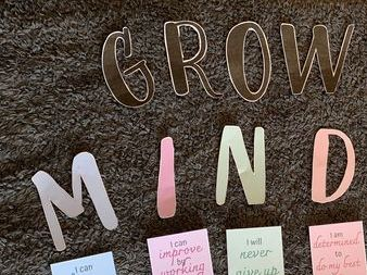 Growth Mindset letting and display