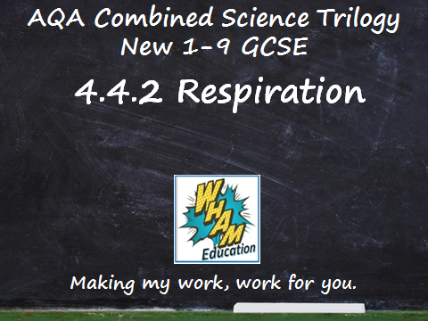 AQA Combined Science Trilogy: 4.4.2 Respiration