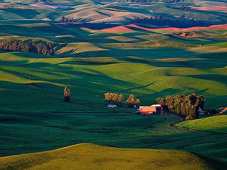 Where to build a farm