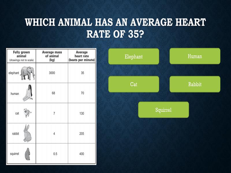 KS2 Table Reading Quiz (Animal Masses)