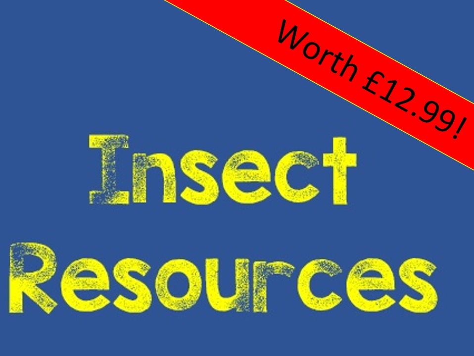Insect Art Resources - great end of year / term lesson