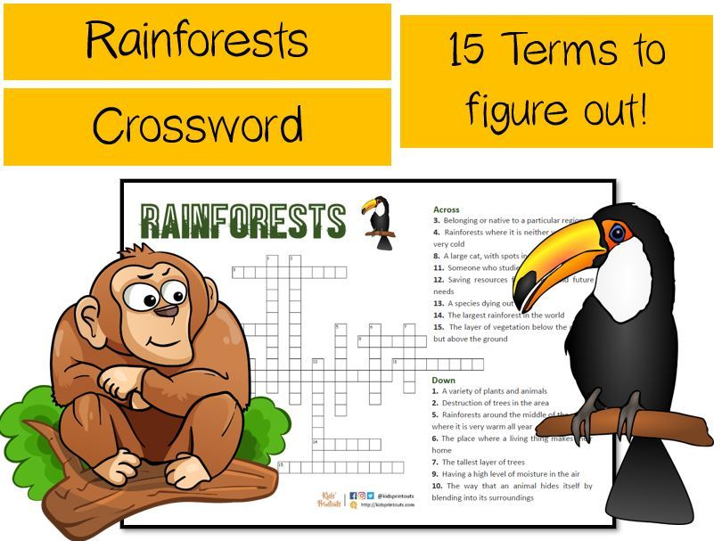 Rainforests crossword puzzle - 15 terms to figure out