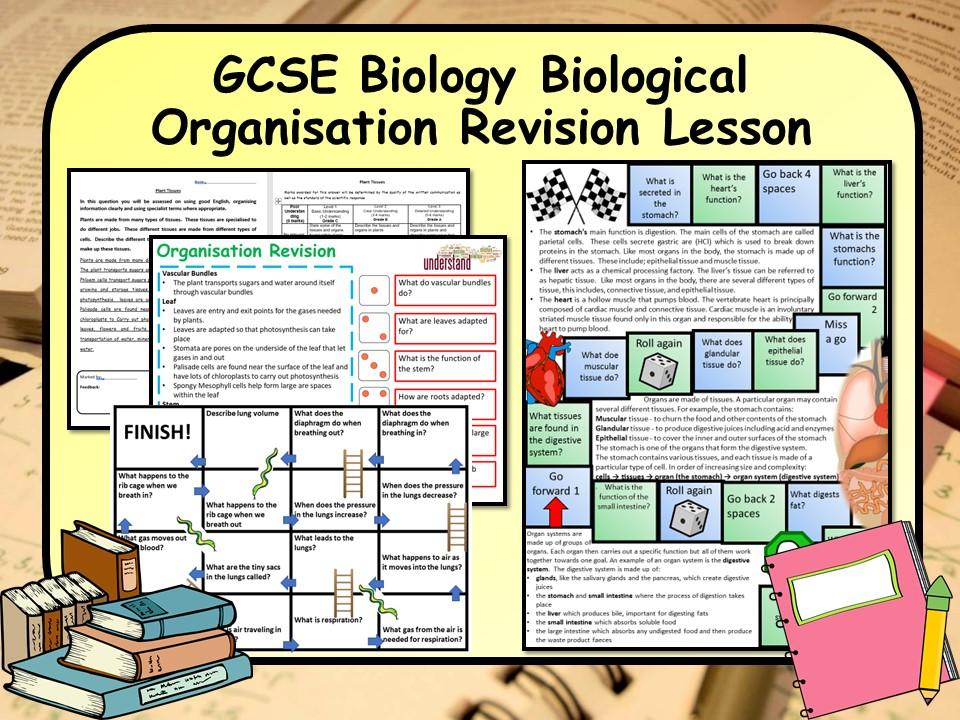 New AQA 1-9 GCSE Biology (Science) Biological Organisation Lesson