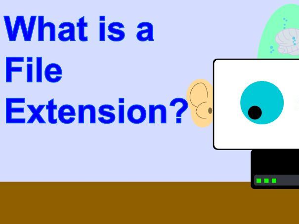 Introduction to File Types (File Extensions)