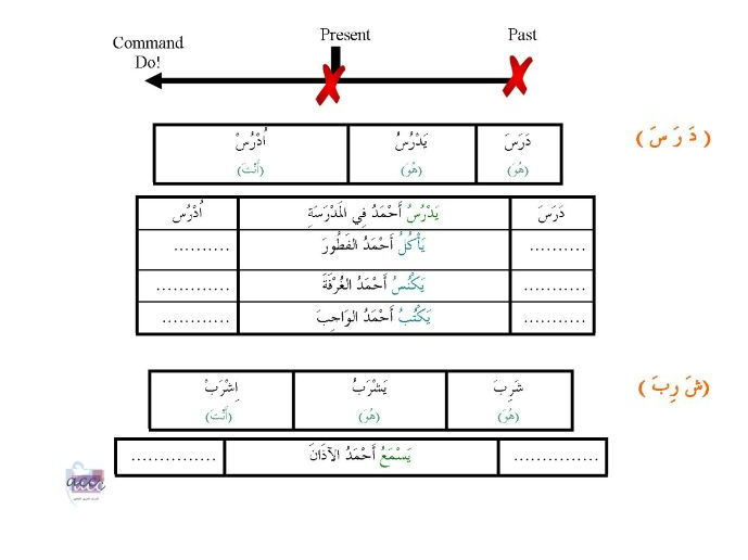 Conjugations in present and past tenses and imperative form