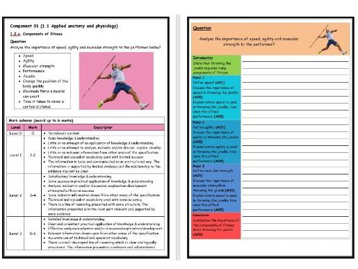 GCSE PE - OCR (9-1) - Structure Strip - Types of Fitness 1 - Extended Question Worksheet