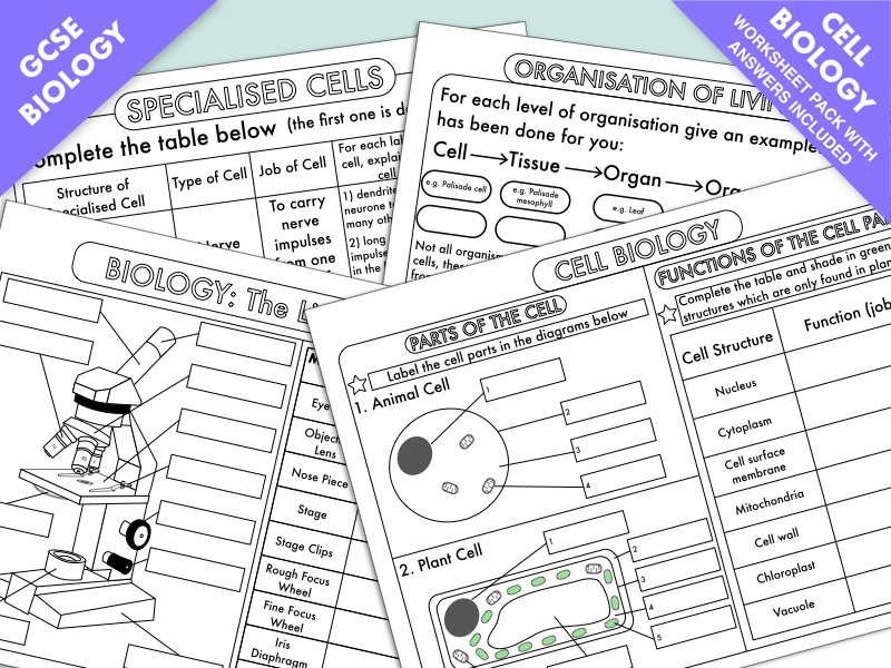 Worksheets And Presentations For Cell Structure By Clickbiology