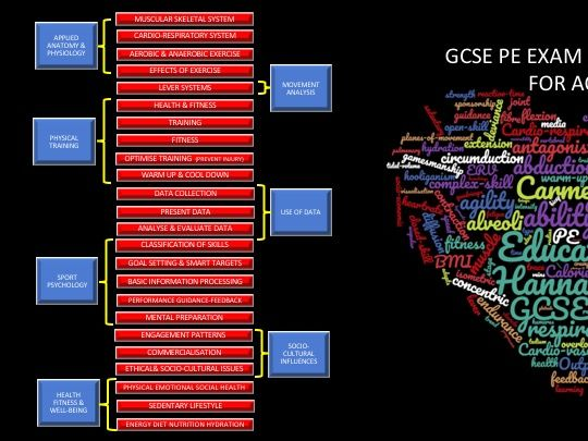 300+ Exam Questions for GCSE PE (AQA) with markschemes