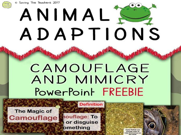 Animal Adaptions: Camouflage and Mimicry PowerPoint FREEBIE