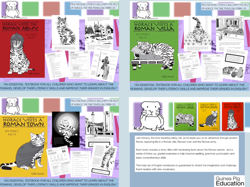 Teach Your Child Good English Series (Complete Series books 1-3) 9-14 years