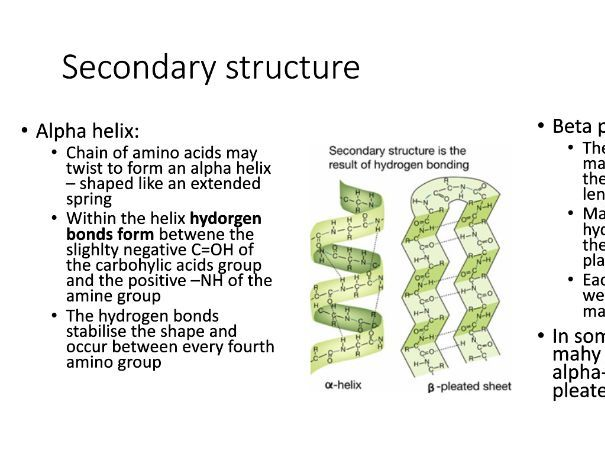 Edexcel A-Level Biology Genes and Health Summary Powerpoint - Topic 2