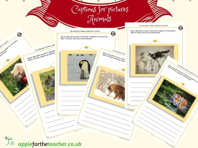 Caption writing for pictures animals
