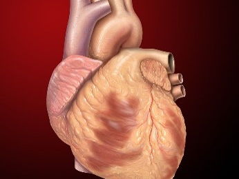 Pacemakers, artificial heart valves and other treatments for problems with the heart. New GCSE