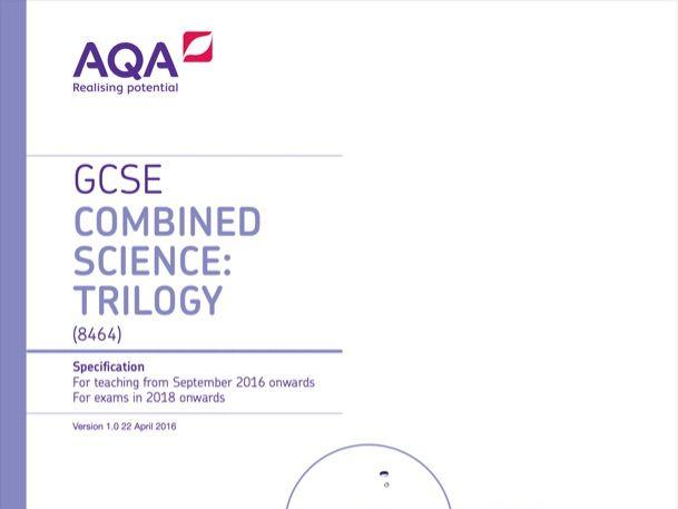 AQA Biology GCSE; Leaf structure, xylem & phloem + The Heart & Blood + Enzymes
