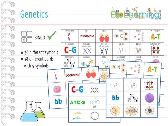 Genetics - Bingo Cards (KS3/KS4)