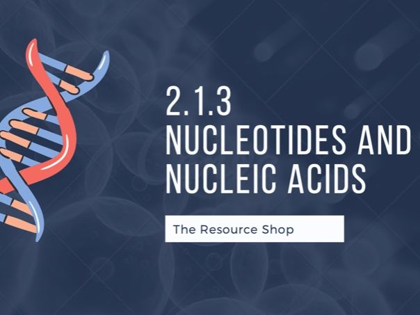 2.1.3 Nucleotides and nucleic acids (A-Level and GCSE presentation and notes)