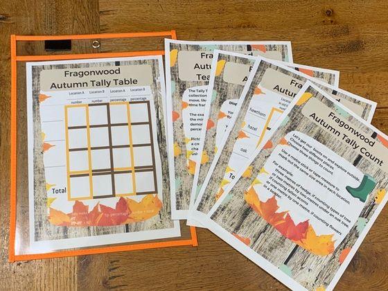 Fragonwood Autumn Tally Table Outdoor maths