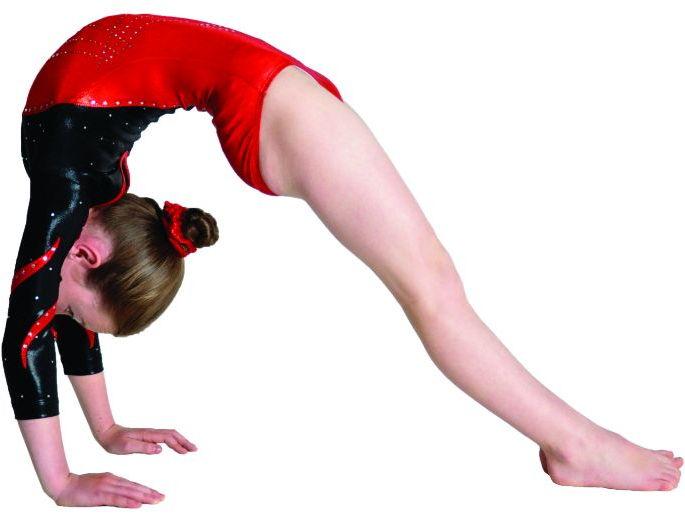 Gymnastics Bridge By Head Over Heels Gymnastics