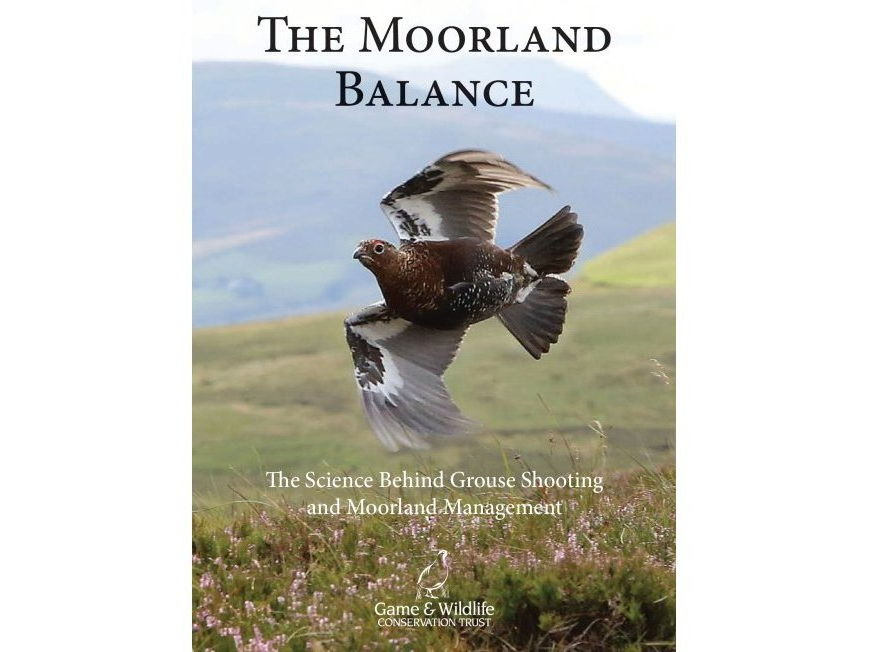 Moorland Balance - The Science Behind Grouse Shooting and Moorland Management
