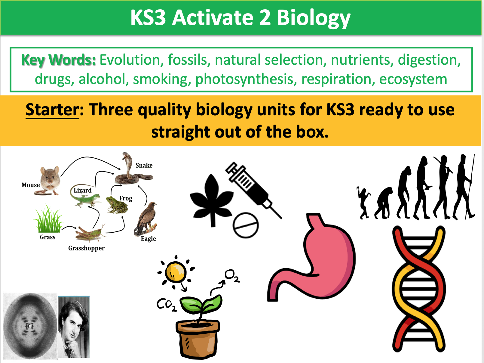 KS3 Activate 2 Biology