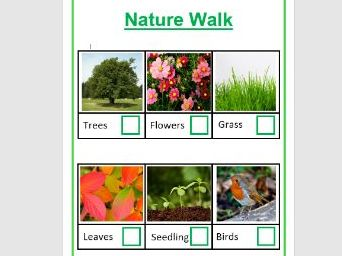 Leaves, Trees and Flowers - Activities