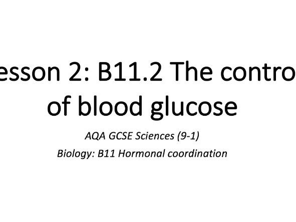 B11.2 The control of blood glucose