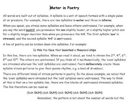 A Guide to Meter