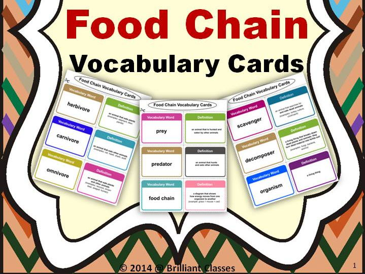 Food Chain Vocabulary Cards - A tool to enrich the vocab....