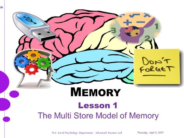 Powerpoint - Memory - Lesson 1 - The Multi Store Model of Memory