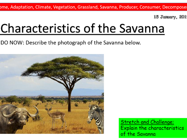 Geography Lesson- Location and Characteristics of the Savanna