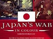 Japan's War in Colour documentary questions.