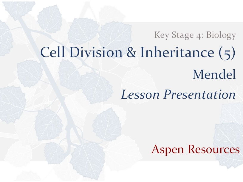 Mendel  ¦  Key Stage 4  ¦  Biology  ¦  Cell Division & Inheritance (5)  ¦  Lesson Presentation