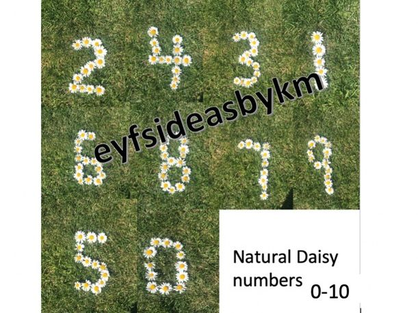Natural Daisy Numbers 0-10