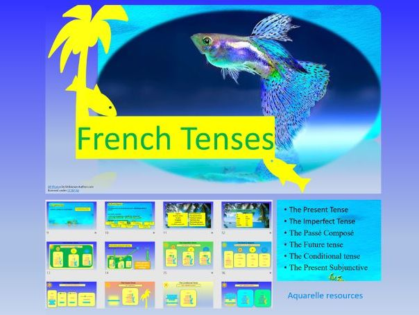 The French Tenses Present Imperfect Future Conditional Passé Composé and Subjunctive PPT