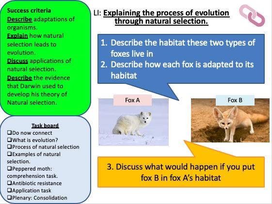 KS3 Natural Selection (Charles Darwin)