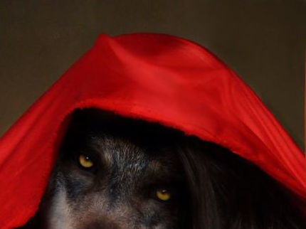 Little Red Da Hood!    Fun drama for upper primary or slightly older.  Theme is  perspectives.