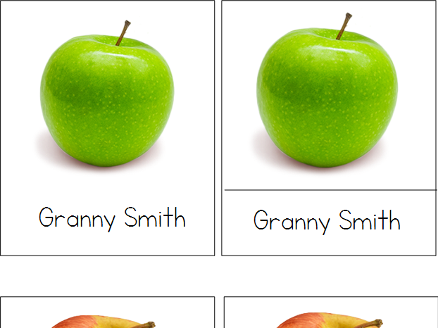 Apples Montessori 3-Part Cards
