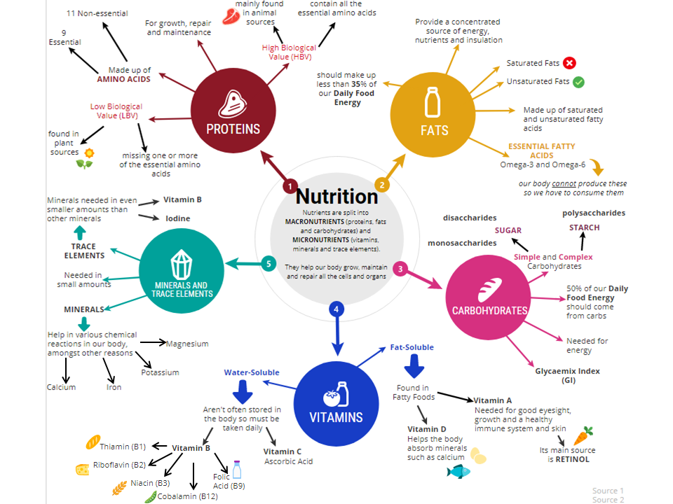 WJEC Food Preparation and Nutrition Revision Infographic - Nutrients