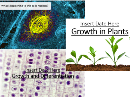 CB2 3 Lesson Bundle (Mitosis, Growth in Animals, Growth in Plants)