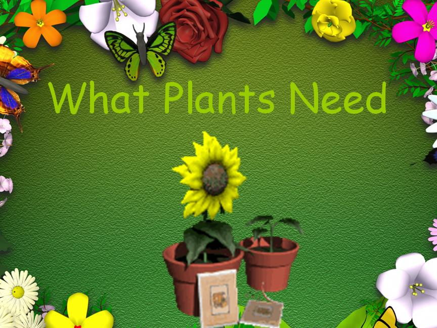 Plants- Growth and Green Fingers- KS1 Science resource pack