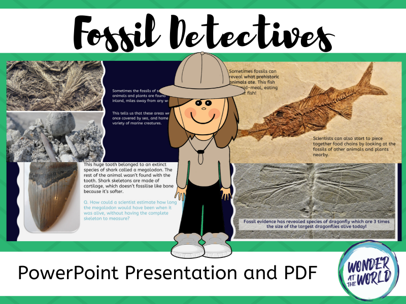 What Can Fossils Tell Us PowerPoint KS2