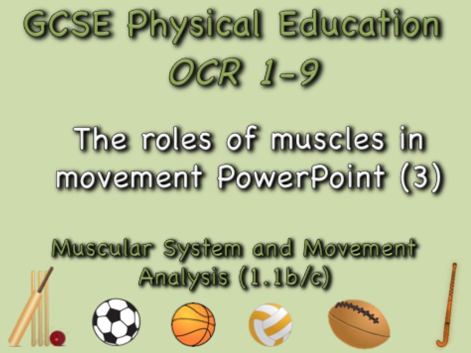 GCSE OCR PE  (1.1b/c) Muscular System and Movement Analysis  - The roles of muscles in movement