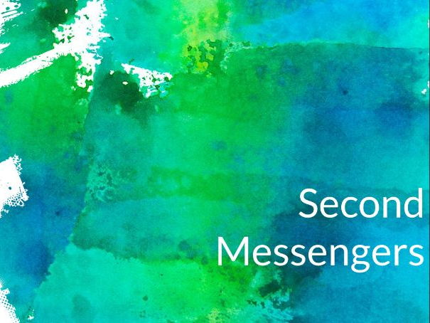 Second Messengers (Adrenaline, Adrenal Gland and Hormone revision)
