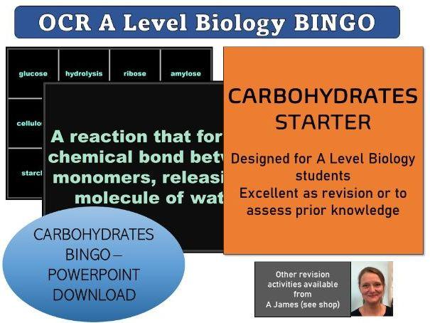 OCR Biology A Level Biological Molecules Carbohydrates BINGO