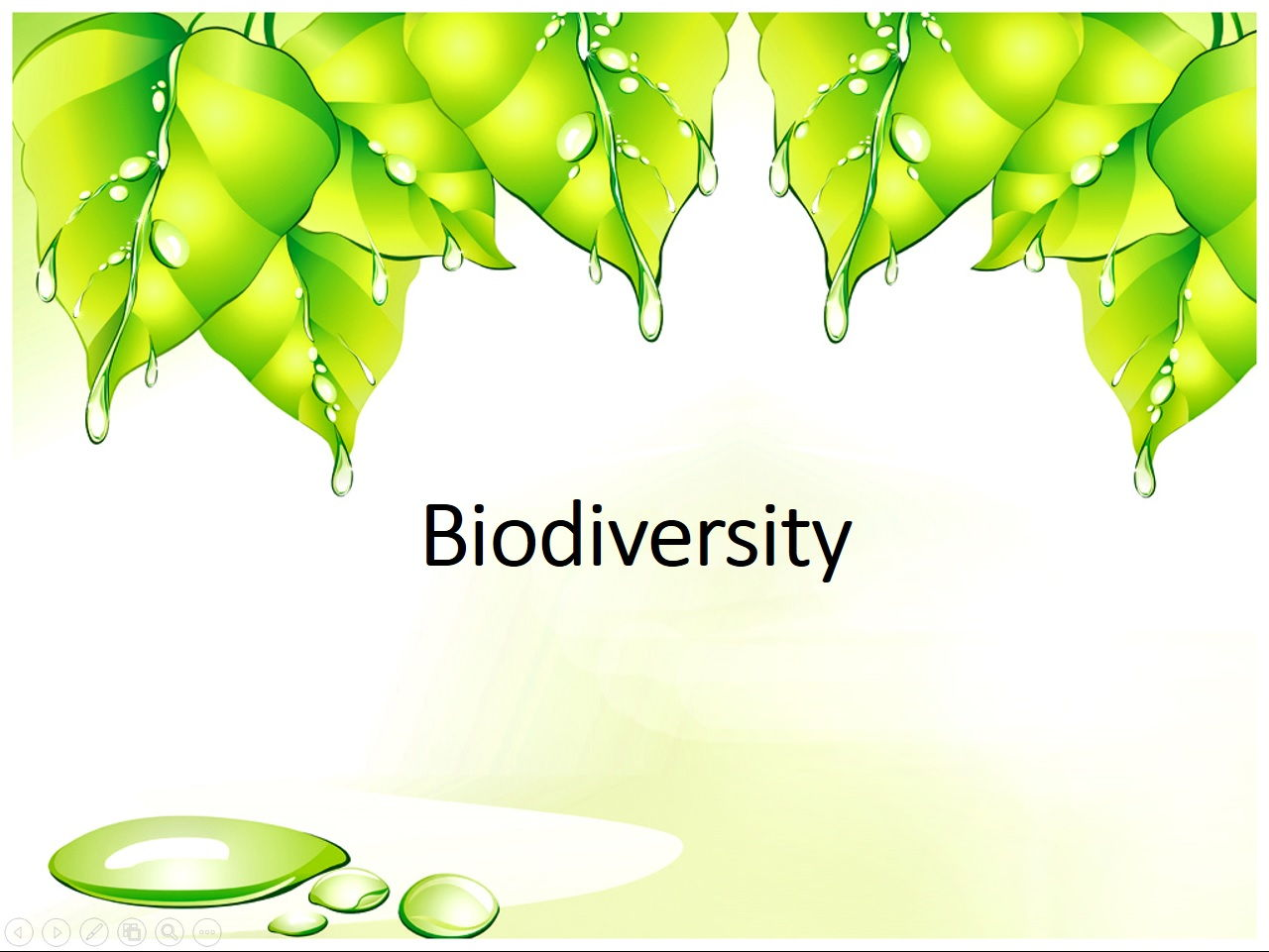 Biodiversity - Classification, Adaptation, Variation & Selection