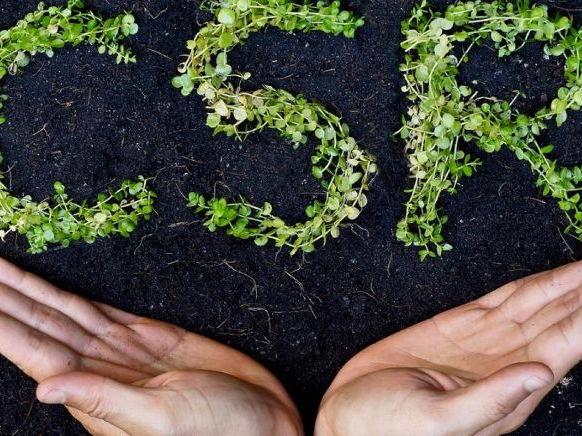 CSR and Globalisation - Presentation