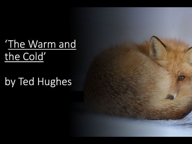KS3 Nature Poetry:  'The Warm and the Cold by Ted Hughes